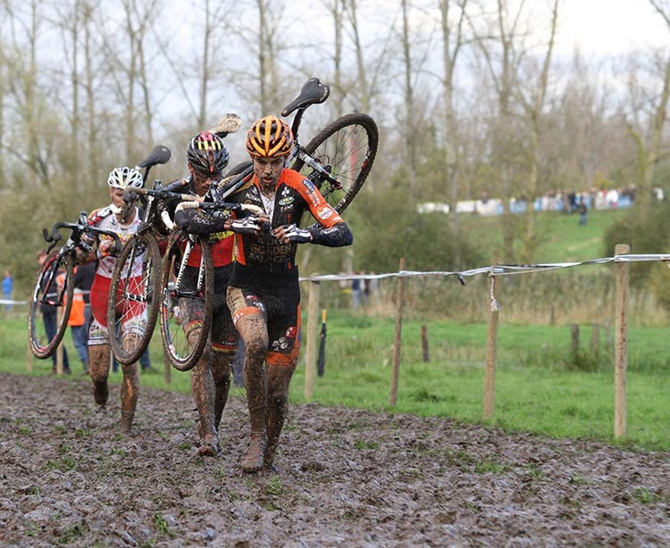 Vestingcross in Gemeente Hulst
